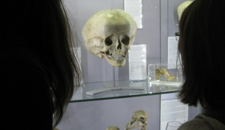 cognight_hunterian1