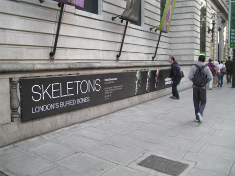 cognight_skeletons1