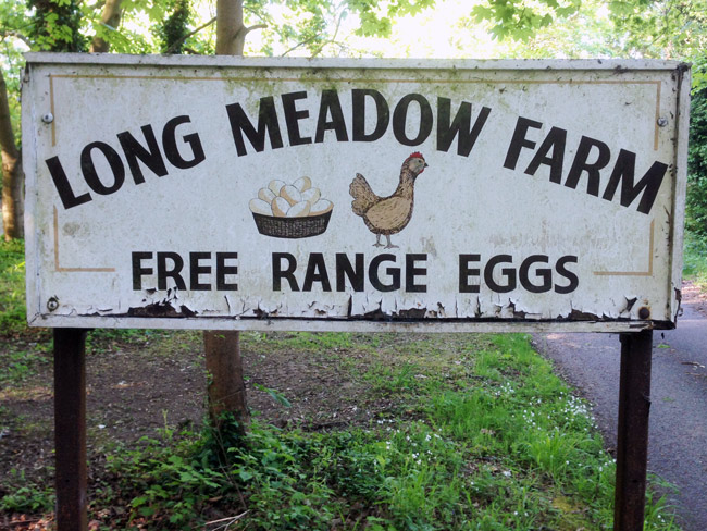 This sign has been there since we moved to the area, 16 years ago. I'm not sure they still sell eggs but the sign is charming.