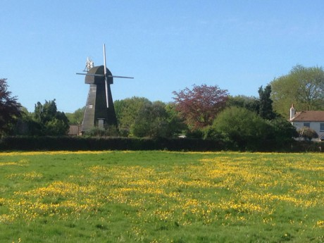 The windmill in West Kingsdown (moved from Farningham in 1880, apparently).