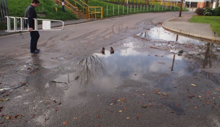 18_Nov_15_Ross_ladder_puddles