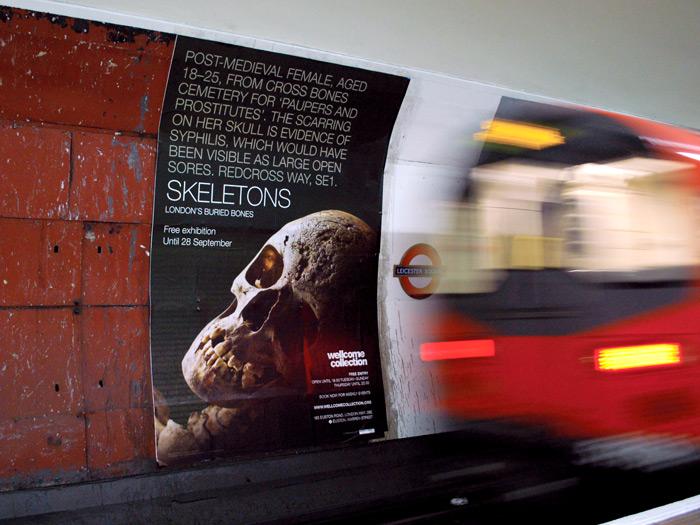 Skeletons_cross-track