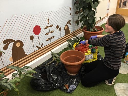 15_Jan_18_Gardening