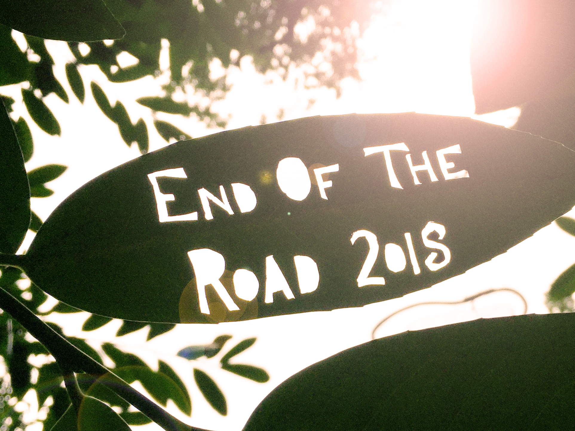 "With the sun behind it we see a leaf with lettering cut out of it. The words read ""End of the Road 2018'."
