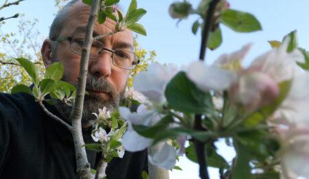 14_Apr_20_Blossom