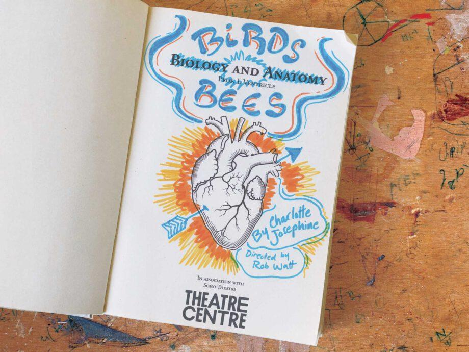 Theatre_Centre_Brids_&_Bees_4x3