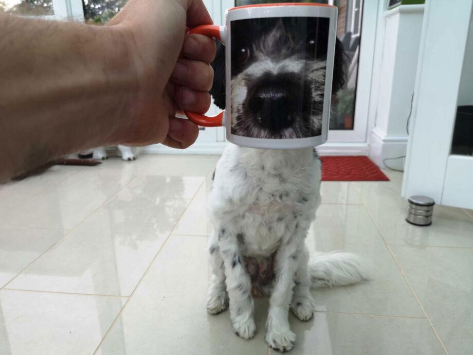 28_Aug_20_Dog_mug